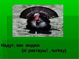 Надут, как индюк (күркетауық, turkey)