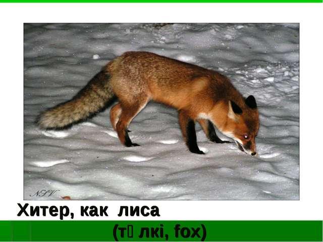 Хитер, как лиса (түлкі, fox)