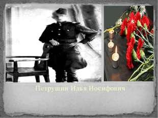 Петрушин Илья Иосифович