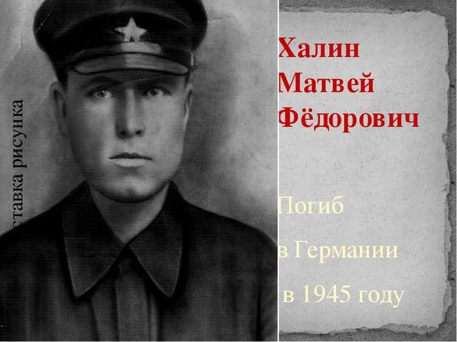 Халин Матвей Фёдорович Погиб в Германии в 1945 году