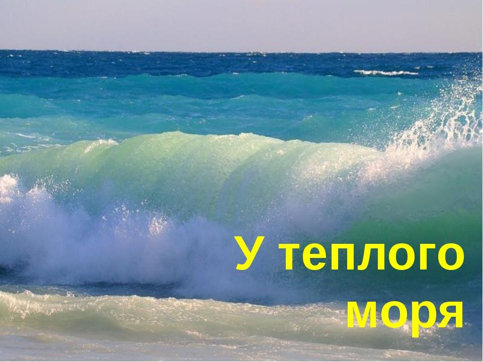 У теплого моря