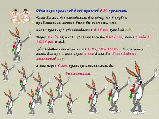 Одна пара кроликов в год приплод в 50 крольчат. Если бы они все оставались в...