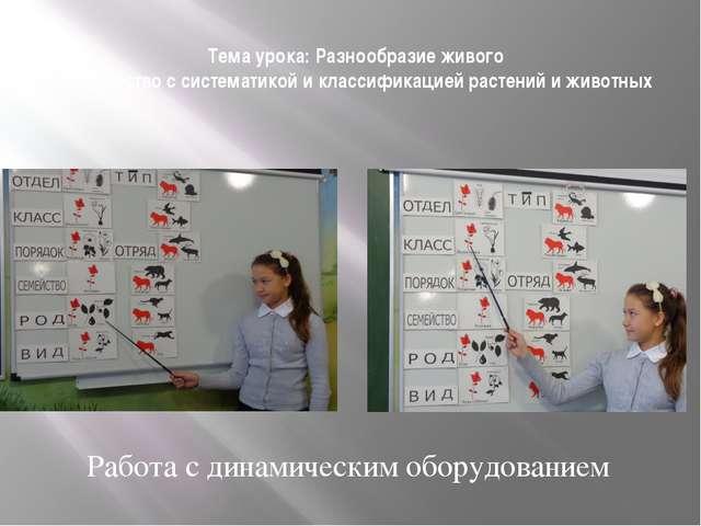 Проектная деятельность Создание презентации : «Клетка».
