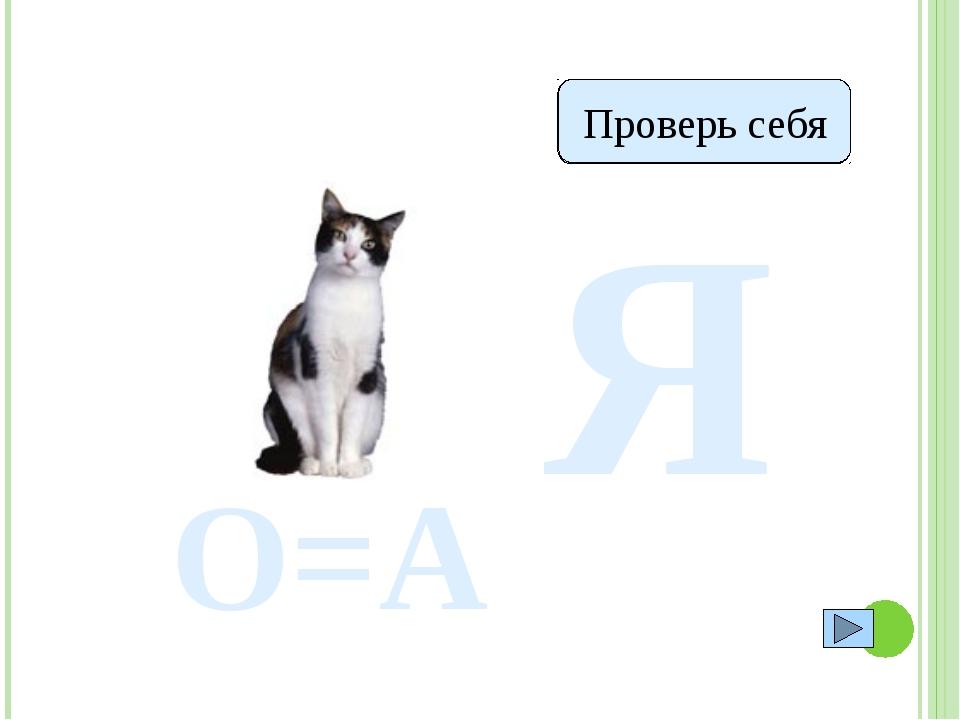 Я Катя Проверь себя О=А