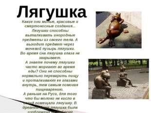 Лягушка Какие они милые, красивые и смертоносные создания... Лягушки способны