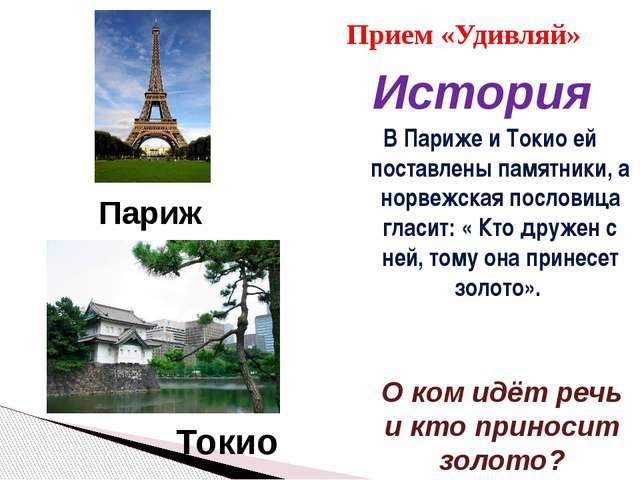 В Париже и Токио ей поставлены памятники, а норвежская пословица гласит: « К...