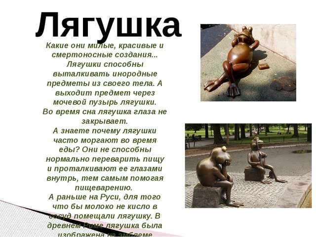 Лягушка Какие они милые, красивые и смертоносные создания... Лягушки способны...