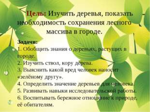 Цель: Изучить деревья, показать необходимость сохранения лесного массива в г