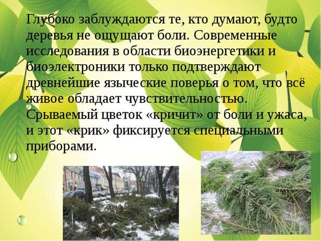 Глубоко заблуждаются те, кто думают, будто деревья не ощущают боли. Современн...