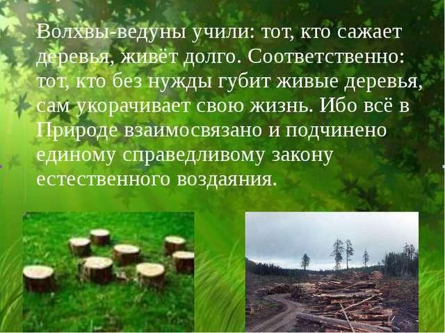 Волхвы-ведуны учили: тот, кто сажает деревья, живёт долго. Соответственно: т...