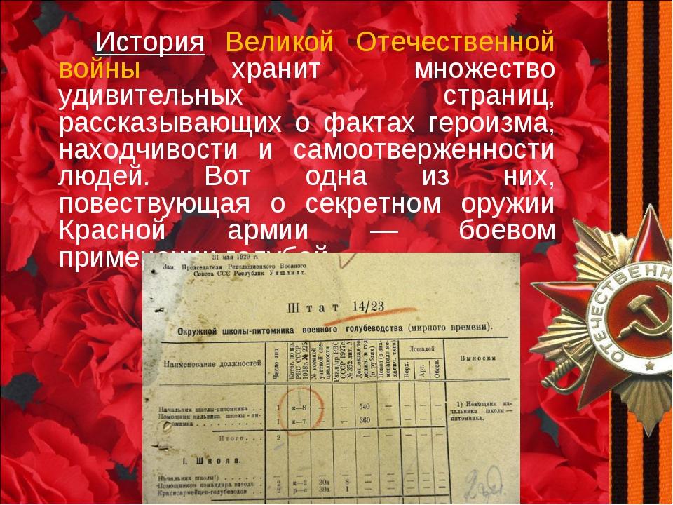 История Великой Отечественной войны хранит множество удивительных страниц, р...