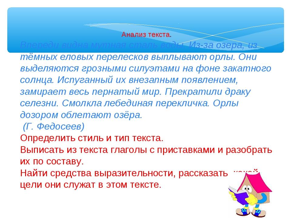 Анализ текста. Впереди видна мутная сталь воды. Из-за озера, из тёмных еловых...