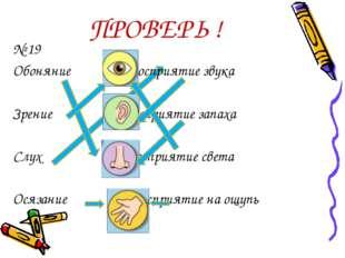 ПРОВЕРЬ ! № 19 Обоняние Восприятие звука Зрение Восприятие запаха Слух Воспр