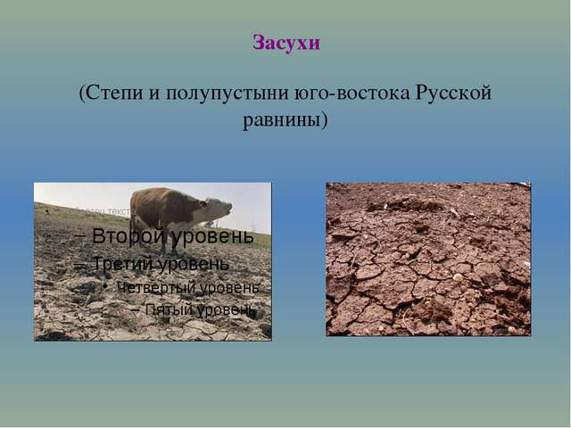 Засухи (Степи и полупустыни юго-востока Русской равнины)