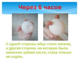 Через 6 часов С одной стороны яйцо стало мягким, а другая сторона, на которую