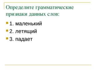 Определите грамматические признаки данных слов: 1. маленький 2. летящий 3. па