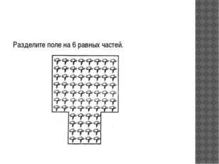 Разделите поле на 6 равных частей.