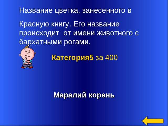 Маралий корень Категория5 за 400 Название цветка, занесенного в Красную книгу...