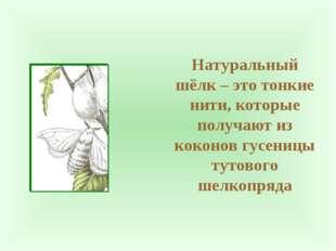 Натуральный шёлк – это тонкие нити, которые получают из коконов гусеницы туто