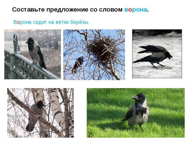 Составьте предложение со словом ворона. Ворона сидит на ветке берёзы.
