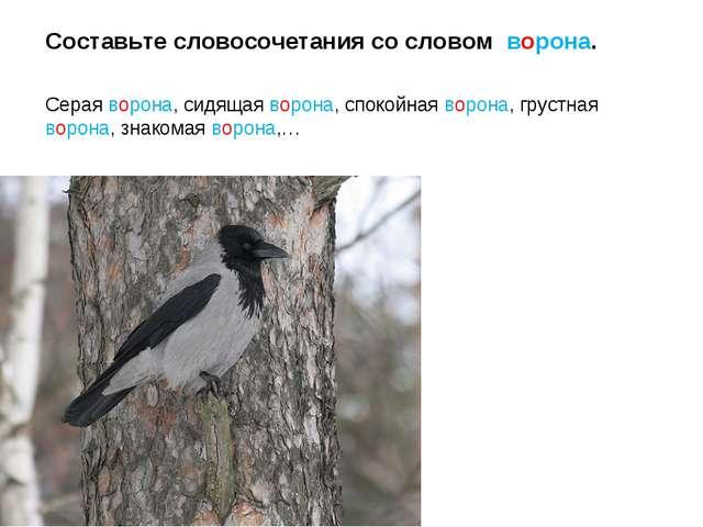 Составьте словосочетания со словом ворона. Серая ворона, сидящая ворона, спок...