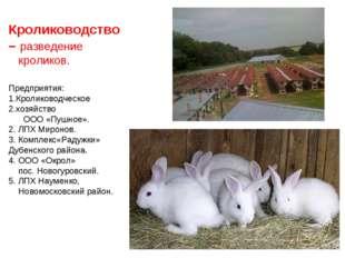 Кролиководство– разведение кроликов. Предприятия: Кролиководческое хозяйство