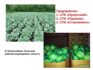 Предприятия: СПК «Приупский». СПК «Парники». СПК «Сторожевое». В Ленинскийом,