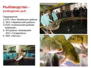 Рыбоводство – разведение рыб. Предприятия: 1.СХК «Луч» Венёвского района. 2.