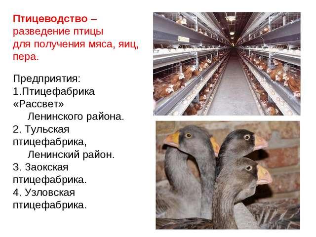 Птицеводство – разведение птицы для получения мяса, яиц, пера. Предприятия: П...