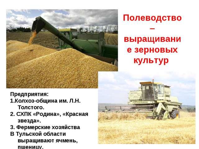 Пример бизнес плана выращивание зерновых культур 22