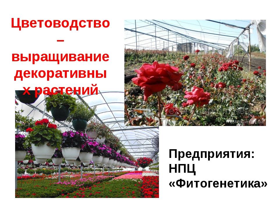 Цветоводство – выращивание декоративных растений Предприятия: НПЦ «Фитогенети...