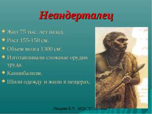 Неандерталец Жил 75 тыс. лет назад. Рост 155-158 см. Объем мозга 1300 см3. Из