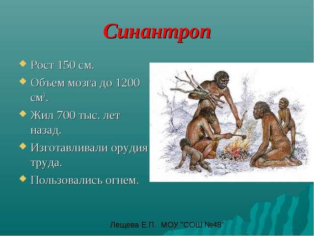 Синантроп Рост 150 см. Объем мозга до 1200 см3. Жил 700 тыс. лет назад. Изгот...