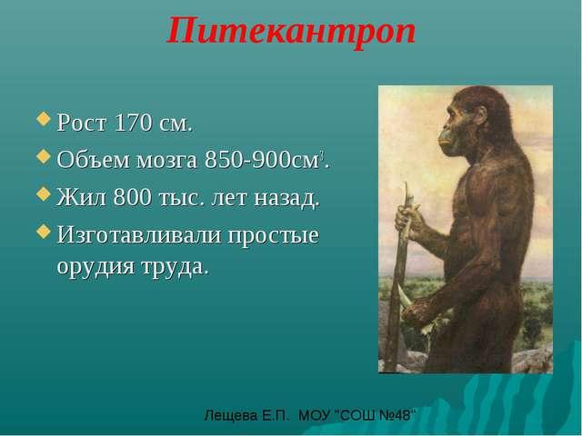 Питекантроп Рост 170 см. Объем мозга 850-900см3. Жил 800 тыс. лет назад. Изг...