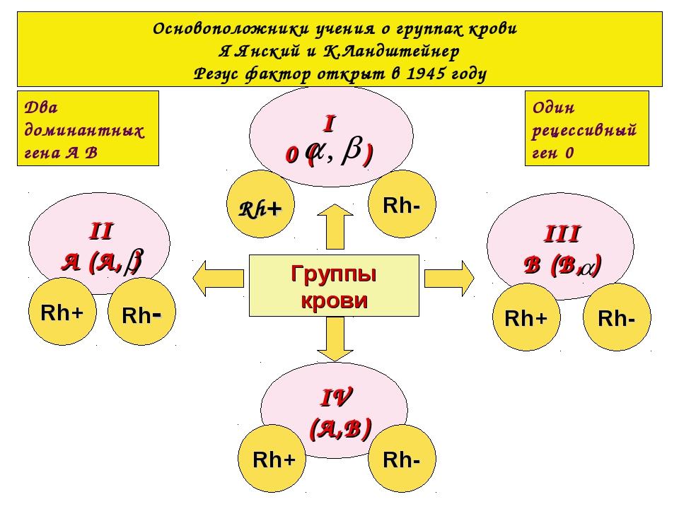 Группы крови I 0 ( ) IV (А,В) II А (А, ) III В (В, ) Rh+ Rh- Rh+ Rh- Rh- Rh+...