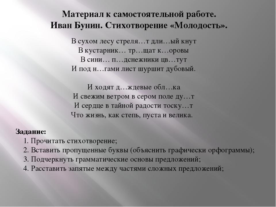 Материал к самостоятельной работе. Иван Бунин. Стихотворение «Молодость». В с...