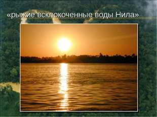 «рыжие всклокоченные воды Нила»