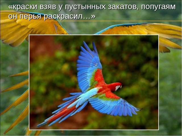 «краски взяв у пустынных закатов, попугаям он перья раскрасил…»