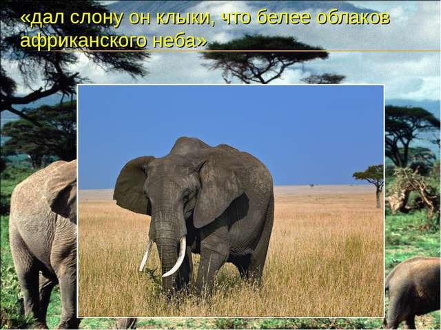 «дал слону он клыки, что белее облаков африканского неба»