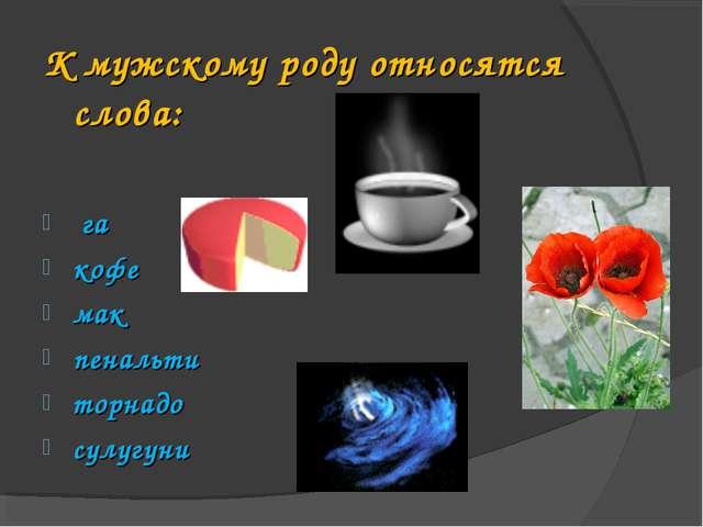 К мужскому роду относятся слова: га кофе мак пенальти торнадо сулугуни