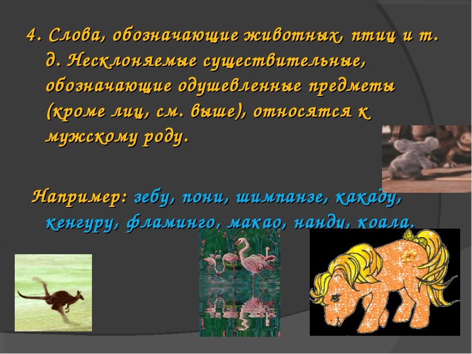 4. Слова, обозначающие животных, птиц и т. д. Несклоняемые существительные, о...