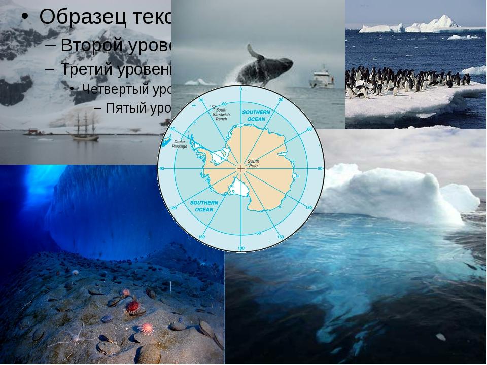 Подумай? Назовите океаны на Земле. Какой из них самый большой по площади? Поч...