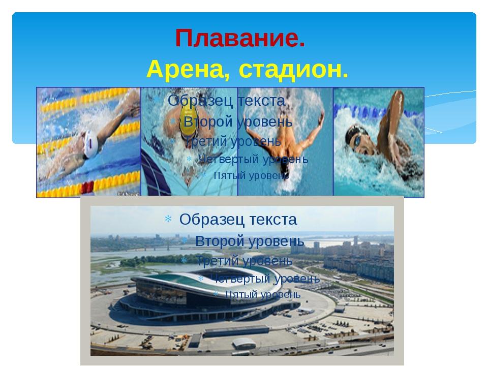 Плавание. Арена, стадион.