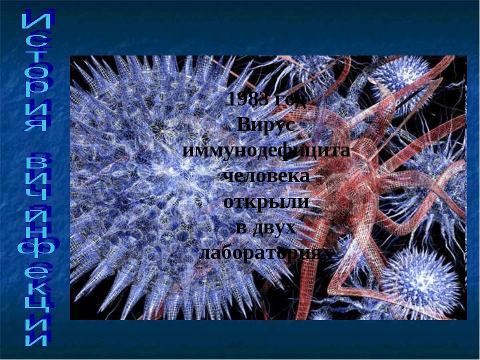 1983 год Вирус иммунодефицита человека открыли в двух лабораториях