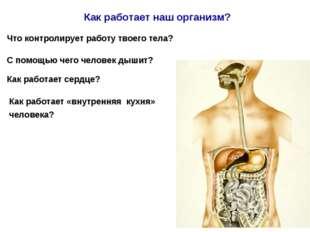 Что контролирует работу твоего тела? С помощью чего человек дышит? Как работа
