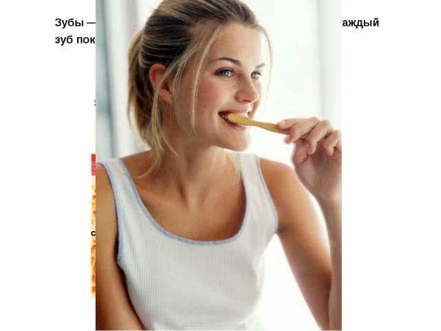 Зубы — самые твердые кости твоего тела. Сверху каждый зуб покрыт тонким защит...