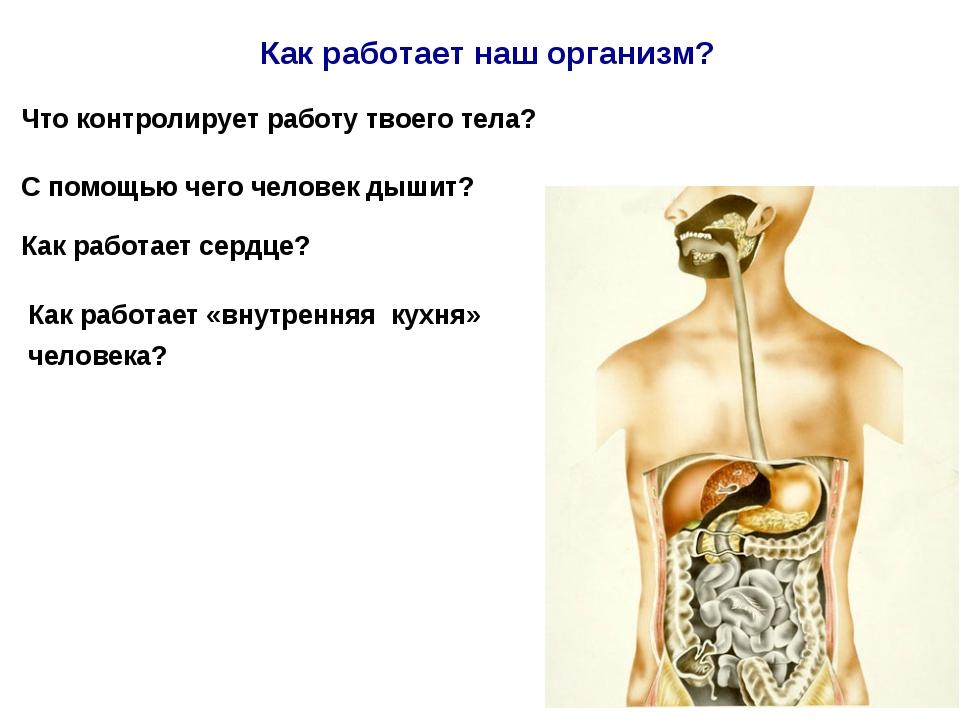 Что контролирует работу твоего тела? С помощью чего человек дышит? Как работа...
