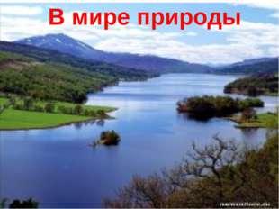 В мире природы