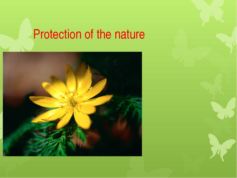 Protection of the nature