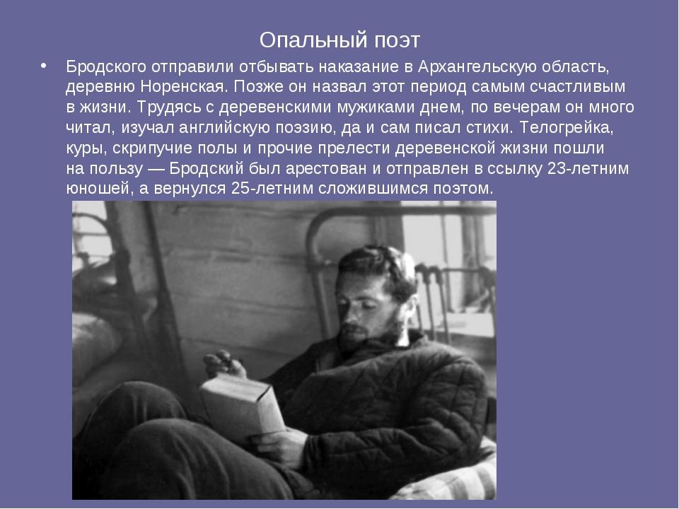 Опальный поэт Бродского отправили отбывать наказание вАрхангельскую область,...